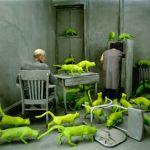 Radioactive cats (1980) by Sandy Skoglund - Pako Campo
