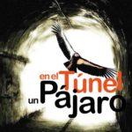 En el Túnel un Pájaro by Pako Campo