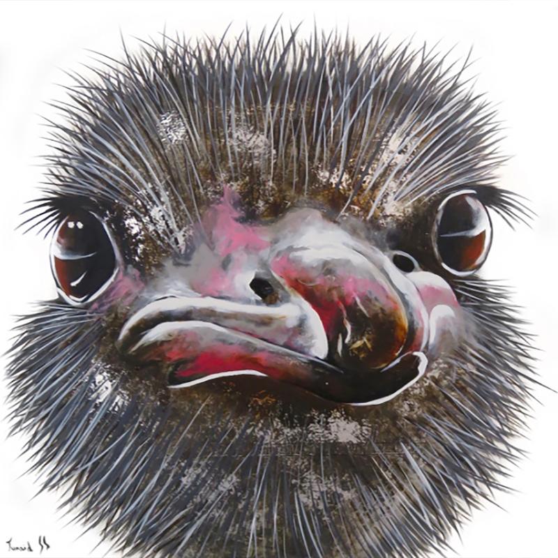 Mini ostriches - Junaid Sénéchal