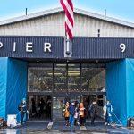Artexpo New York 2018 - Pier 94 - Pako Campo