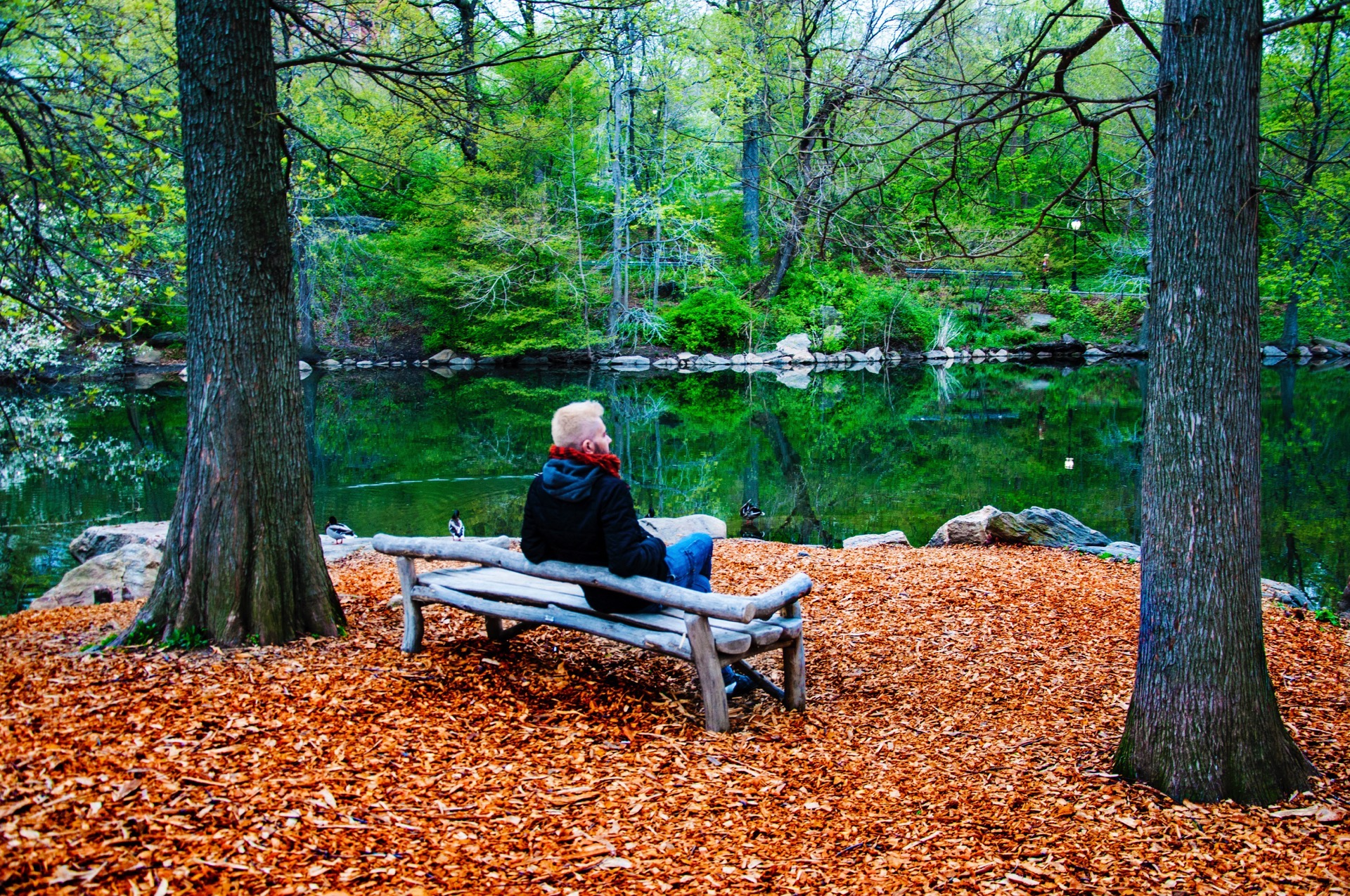 Having rest in Central Park - Pako Campo