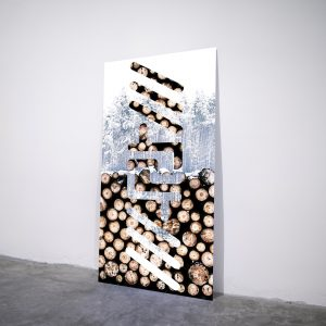 Winter Artbigram - Visual art on acrylic glass by Pako Campo