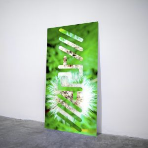 Spring Artbigram - Visual art on acrylic glass by Pako Campo