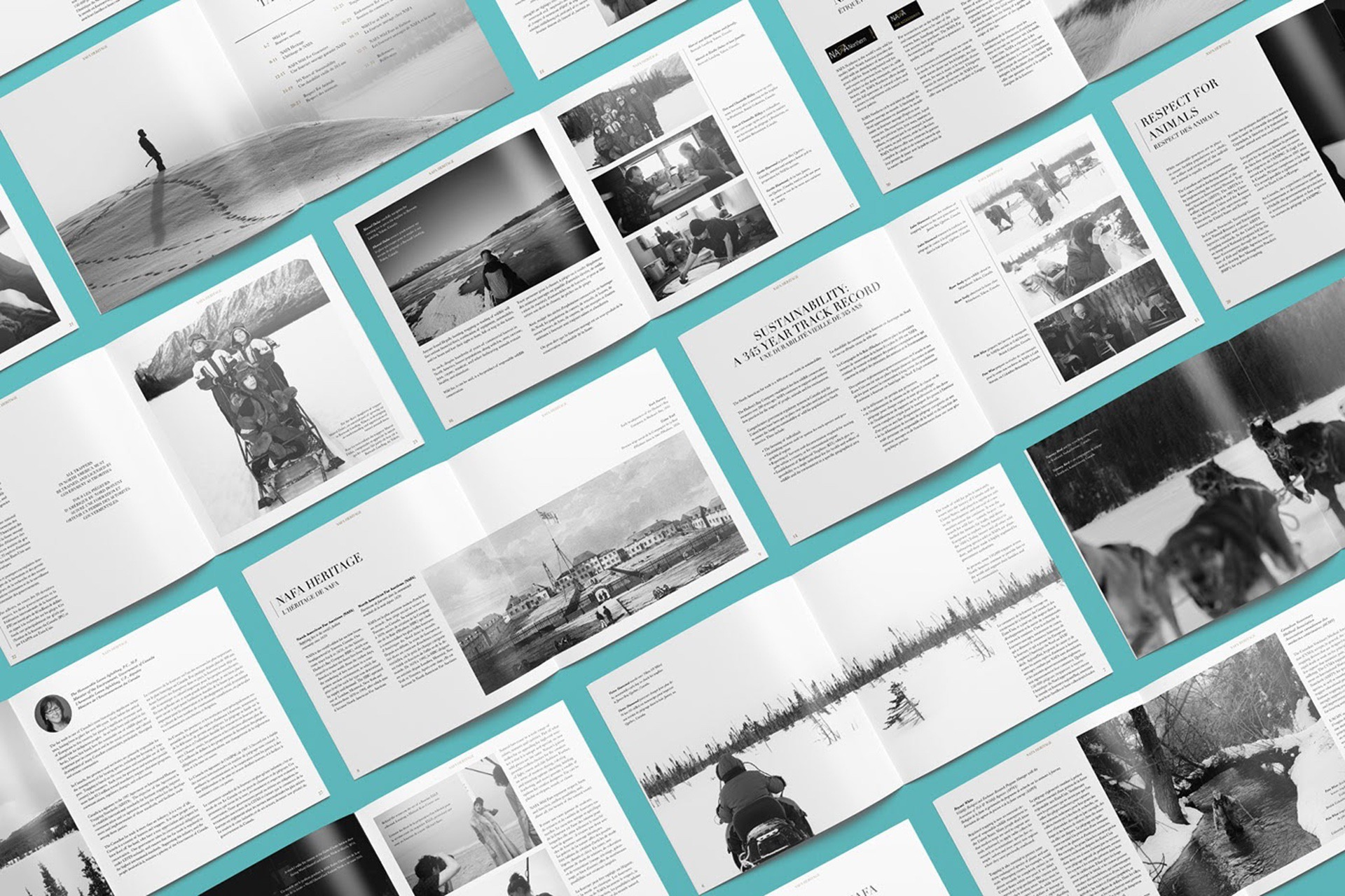 Dane Labelle – Graphic Designer, Art Director